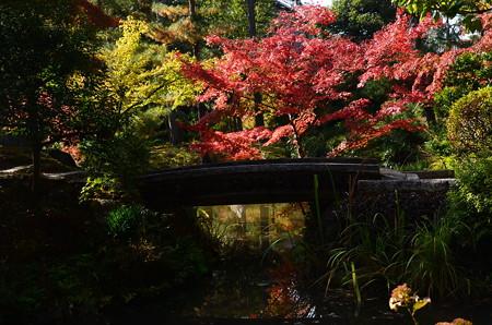 心字池の秋景