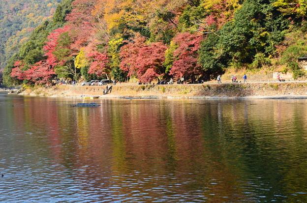 秋彩の大堰川