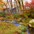 小川を囲む紅葉