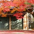 紅葉の上御霊神社