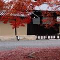 写真: 京都迎賓館の紅葉