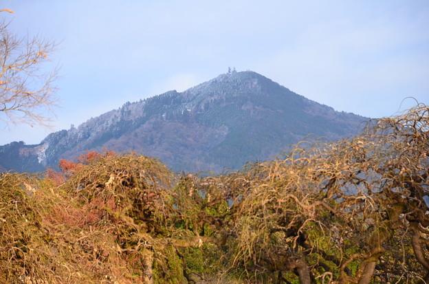 比叡山はうっすらと雪
