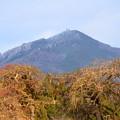 Photos: 比叡山はうっすらと雪