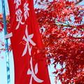 赤と赤と~