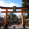 冬の平野神社