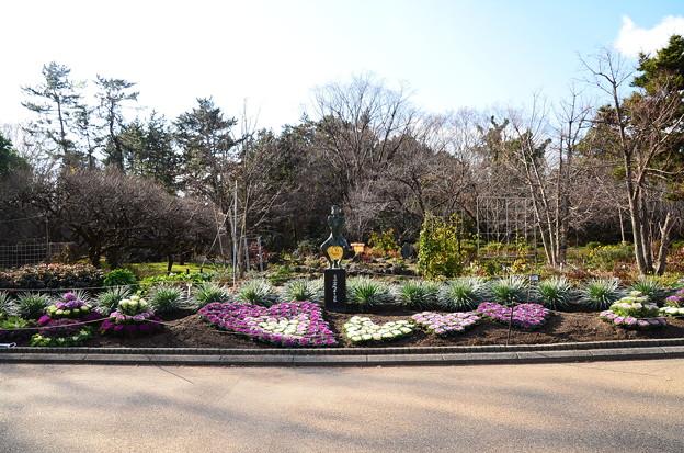 お正月準備の京都府立植物園