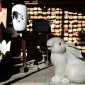 Photos: 狛兎の神社