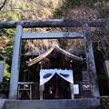 Photos: 大豊神社本殿