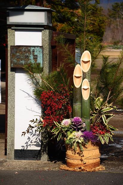 府立植物園の門松