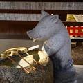 Photos: 猪の手水