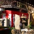 Photos: お正月の菅原院天満宮