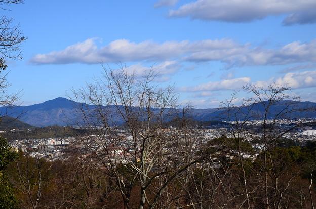 嵐山公園からの眺望