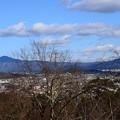写真: 嵐山公園からの眺望
