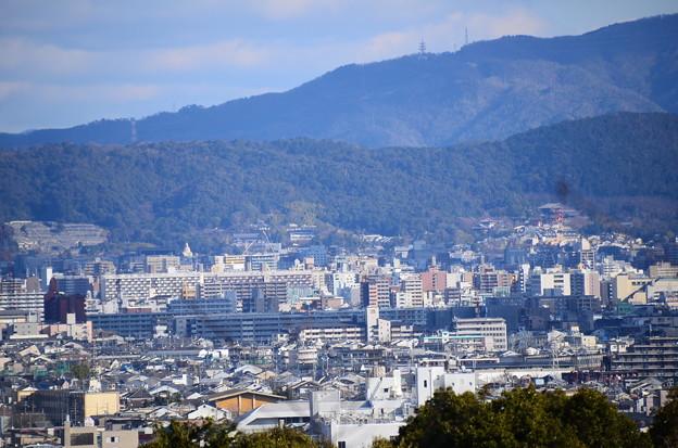 嵐山からの市内展望