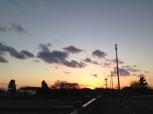 賀茂川の夕景