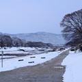 Photos: 雪の賀茂川