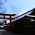 Photos: 下鴨神社の雪景色