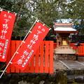 Photos: 1月の下鴨神社