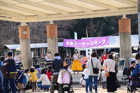 京都ツーデーウオーク