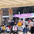 Photos: 京都ツーデーウオーク