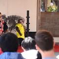Photos: 猿回しの奉納
