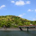 Photos: 新緑の宇治川
