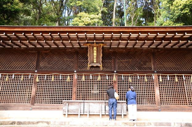 Photos: 宇治上神社本殿