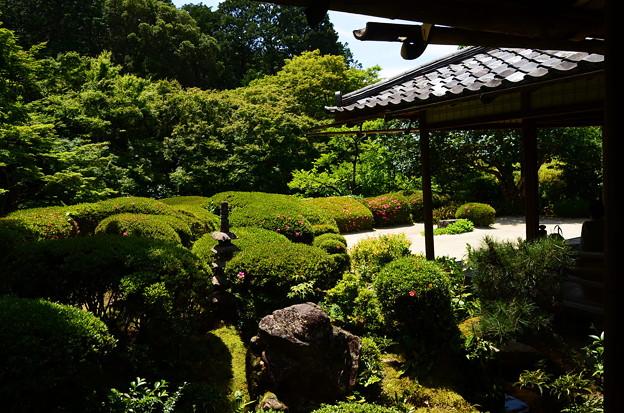 初夏の詩仙堂