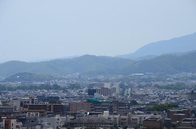 裏山からの眺望