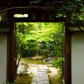 Photos: 金福寺風景