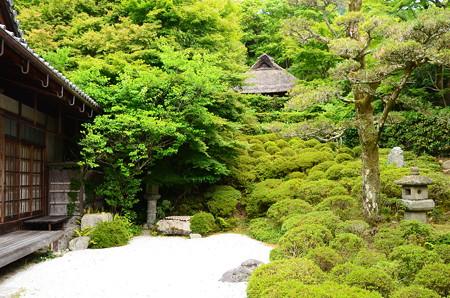 初夏の金福寺