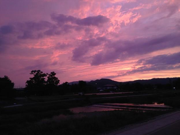 Photos: 梅雨入り前の