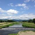 Photos: 梅雨の晴れ間の賀茂川