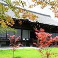 色づく勧修寺