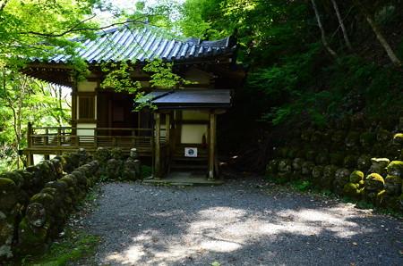 夏の愛宕念仏寺