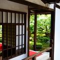 Photos: 晩夏の圓光寺