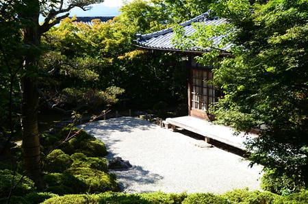 晩夏の金福寺