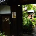 Photos: 晩夏
