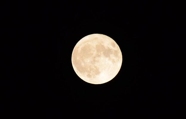 中秋+1夜の名月