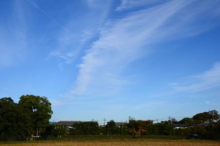 落柿舎脇の秋空
