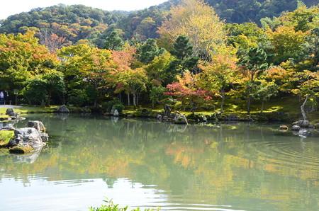 秋色の曹源池