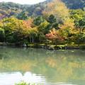 Photos: 秋色の曹源池