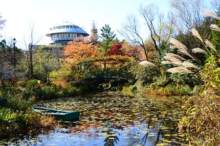 ガーデンミュージアム比叡の秋景色