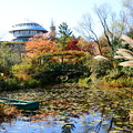 Photos: ガーデンミュージアム比叡の秋景色