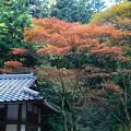 Photos: 横川地区