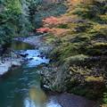 Photos: 清滝川の色づき