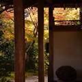Photos: 客殿越しの紅葉