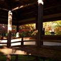 Photos: 西明寺の紅葉景色