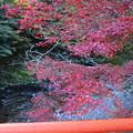 Photos: 指月橋から