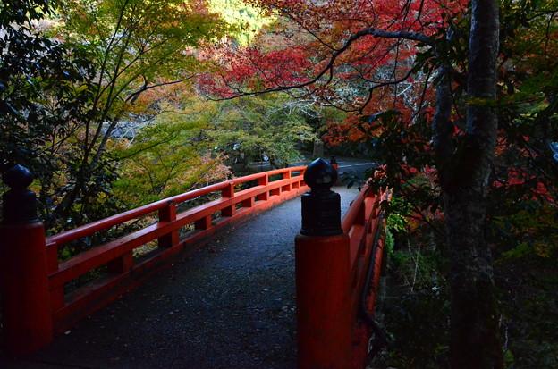 Photos: 指月橋